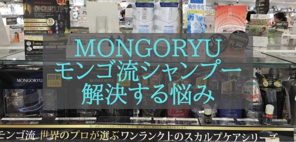 MONGORYU モンゴ流シャンプー 解決する悩み