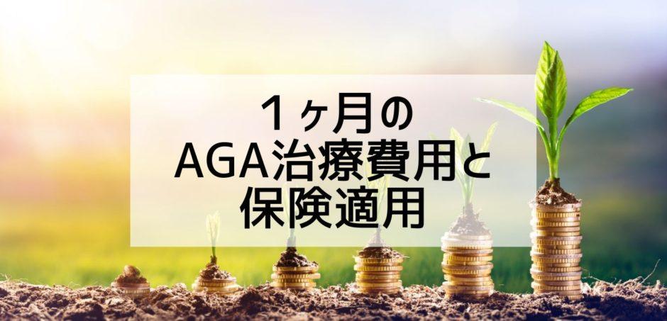 1ヶ月の AGA治療費用と 保険適用-2